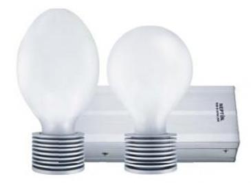 Bulb / Globe Style Induction Bulbs