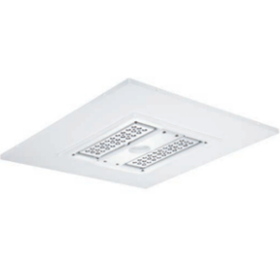 CREE 304 Series Canopy Flood Parking High/Low Bay Luminaires