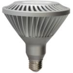 GE Lighting LED PAR38 Light Bulbs
