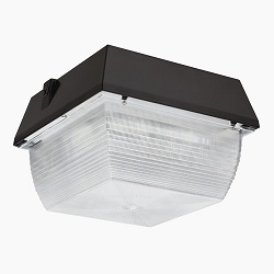 RAB Lighting LED Canopy Lights