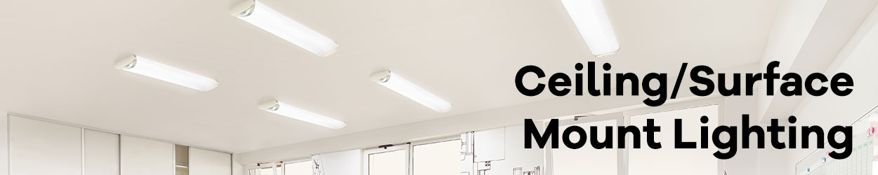 Surface / Ceiling Mount