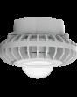 Clear Globe RAB Lighting HAZPLED42 42W LED Pendant Mount Hazardous Location Fixture 5100K