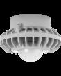 Frosted Globe RAB Lighting HAZPLED42 42W LED Pendant Mount Hazardous Location Fixture 5100K