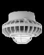 Wire Guard RAB Lighting HAZPLED42 42W LED Pendant Mount Hazardous Location Fixture 5100K