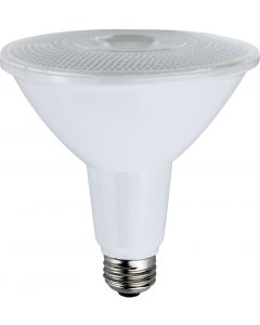 NaturaLED LED15PAR38/OD/120L/FL Energy Star Certified 15 Watt PAR38 LED Dimmable Outdoor Rated Lamp 100W Equivalent
