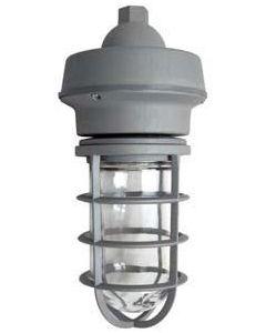 ATG Electronics MVP43-10-50-G 10 Watt Marina LED Vaporproof Ceiling Mount Pendant Mount Light Fixture