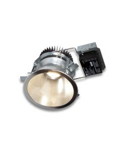 GE Lighting RI10-10 16W 16 Watt 10
