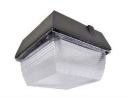 ATG Electronics CPPG-40-50-G2 eLucent 40 Watt LED Canopy Light 100-277VAC 1-10V Dimming