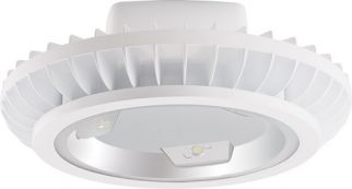 RAB Lighting BAYLED78 78 Watt LED High Bay Light Fixture with Hook and Cord White Finish (Product Configurator)